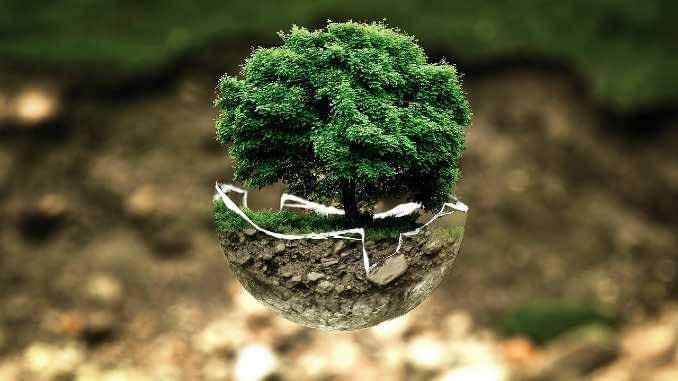 पर्यावरण संतुलन